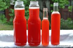 Sirop de capsuni fara fierbere Savori Urbane (11) Top Recipes, Cooking Recipes, Romanian Food, Romanian Recipes, Strawberry Syrup, Pastry Cake, Frappe, Refreshing Drinks, Hot Sauce Bottles