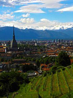 Torino da Villa della Regina