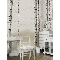 Great 4 Walls Modern Murals Birch Trees Mural In Neutral Part 16