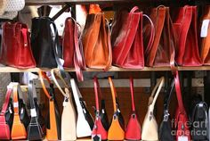 If only the shiny polished handbags and other leather goods showcased in stores around the world showed their true origins. You'd see cats, dogs, cows and sheep that were brutally tortured in the name of materialism. You'd see poor workers suffering from cancer with no money for proper treatment. And you'd see the taxing effect the production of leather has on our environment.