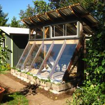 A passive solar greenhouse built from cob, light clay-straw and salvage materials couples with other Earthship ideas to grow Fish, to fetilize plants & clean & reuse water.