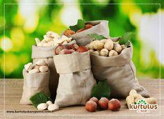 Doğal ve taze kuruyemiş siparişinizi kolay bir şekilde verebilmek için www.kurtuluskuruyemis.com.tr #onlinekuruyemiş