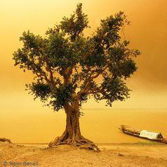 Sandstorm on the Niger River, Mali