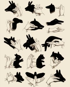shadow hand puppet poses. TRY IT :)