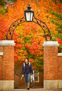 fall foliage pictures | Preview of the Fall Foliage | Parents | Wake Forest University