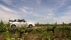La carretera del vi, wine road España wine road penedes wine road penedes la carretera del vino Cataluña la carretera del vino penedes la carretera del vino Barcelona wine road Barcelona wine raod Barcelona wine raod España ruta del vino penedes
