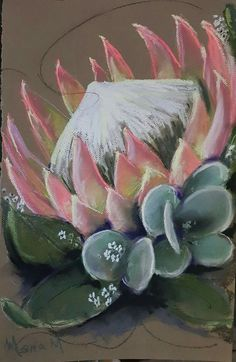 Protea Art, Protea Flower, Botanical Illustration, Illustration Art, Blue Flower Wallpaper, Africa Art, Pallet Art, Shabby, Painting Inspiration