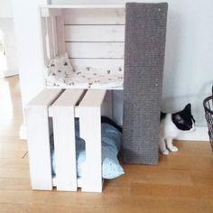 Tree from IKEA boxes Homemade - Katzen - Cat House Diy, Diy Cat Toys, Cat Enclosure, Cat Room, Cat Condo, Cat Crafts, Cat Furniture, Furniture Stores, Furniture Design