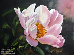 Peony by Monika Pate Watercolor ~ 7 x 10