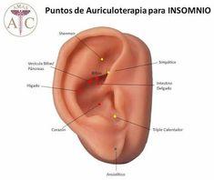 Resultado de imagen para auriculoterapia subcortex