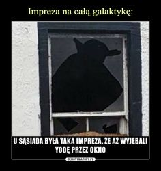 wszystkie memy z neta :v # Humor # amreading # books # wattpad Laugh Or Die, Weekend Humor, Funny Mems, Wtf Funny, Reaction Pictures, Funny Comics, Best Memes, Really Funny, Funny Photos