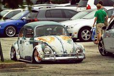 Stanced beetle