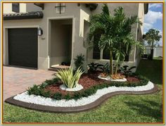 Florida Landscaping, Tropical Landscaping, Landscaping With Rocks, Front Yard Landscaping, Landscaping Ideas, Backyard Ideas, Landscaping Software, Large Backyard, Outdoor Landscaping