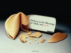 lionofallah:  Fortune Cookie: Luck vs Allah's Blessings - www.lionofAllah.com
