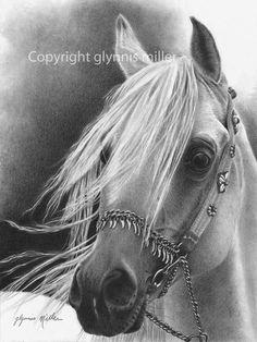 Desert Song by Glynnis Miller Pencil ~ 12 x 9