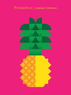 Fruit: Pineapple Art Print - Christopher Dina