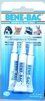 BeneBac Pet Gel 4Pack  Four 1g tubes -- To view further for this item, visit the image link.(This is an Amazon affiliate link)
