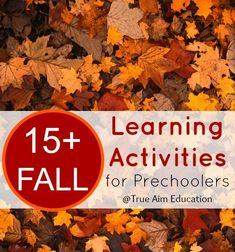 15+ Unique Fall Learning Activities for Preschoolers - So cool!