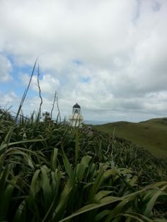 Awhitu Lighthouse in Waiuku