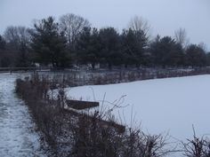 Winter in Mount Laurel, NJ Mount Laurel, Little Christmas, Magic, Mountains, Winter, Nature, Travel, Outdoor, Winter Time
