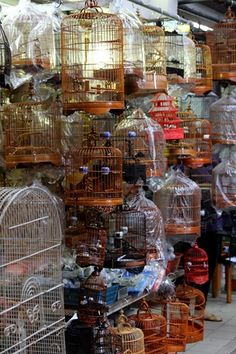 we spent our second full day in hong kong across victoria harbor in a part of the city called kowloon. first stop was the hong hong temple. Robin Bird Tattoos, Chinese Crafts, The Caged Bird Sings, Chinese Festival, Hongkong, Chinese Architecture, Bird Cages, Bird Houses, Birds In Flight