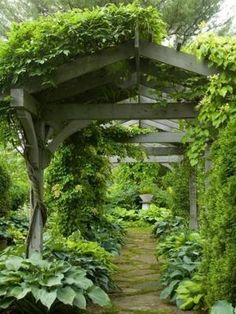 Pergola with Hostas. by Olive Oyl