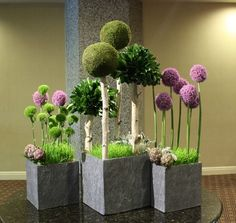 """""""The Park"""" Fantasy """"trees"""" of allium, green dianthus, pittosporum & moss orbs cast shade upon a wheat grass """"lawn"""". Boarder plantings of artichokes and dusty miller complete the industrial chic look. Unique Flower Arrangements, Unique Flowers, Floral Centerpieces, Red Flowers, Deco Floral, Arte Floral, Floral Design, Arreglos Ikebana, Moss Decor"""