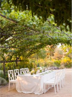 Arched wrought iron pergola - perfect for shading outdoor dinner guests.