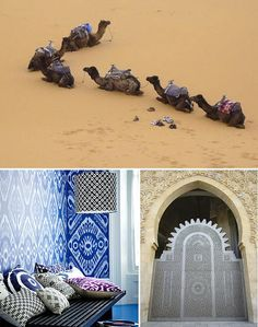 Morocco  see, smell, eat, explore and learn to weave