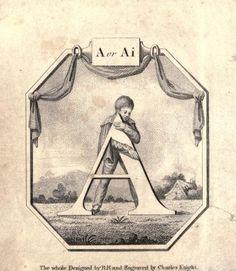 """A or Ai"" (A) ~ Vintage Children's ABC Flash Card"