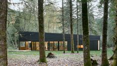 courtyard house on a river robert hutchison architecture 8553