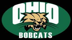 I want to be a bobcat for 5 years!!!!