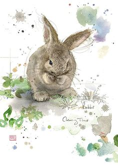 Cleaning Rabbit - Bug Art greeting card #cute #bunny #watrecolour repinned by bluejdesign.co.uk