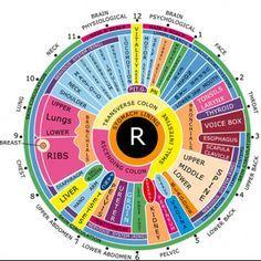 Free Iridology Eye Chart Downloads Large Iridology Chart