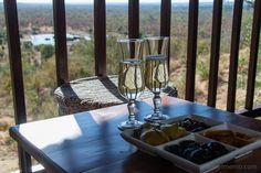 Life by a water hole - Victoria Falls Safari Lodge Victoria Falls, Zimbabwe, Safari, Victoria