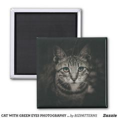 CAT WITH GREEN EYES PHOTOGRAPHY FRIDGE MAGNET Eye Photography, Succulents Diy, Paper Cover, Green Eyes, Invitation Cards, Cats And Kittens, Art For Kids, Magnets, Art Pieces