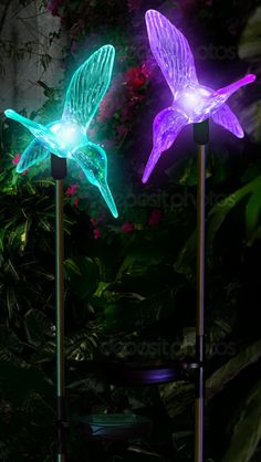 Color Changing Solar Hummingbird Garden Lights to Embellish Your Beautiful Garden! Check it out now- http://www.solarduke.com/products/solar-garden-stake-lights-color-changing-hummingbirds-wing-up-wing-down
