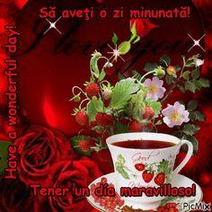 Tener un día maravilloso!@4 Ten, Rose, Beautiful, Spirituality, Pink, Roses