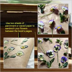 How to DIY Decoupaged Candle with Dried Flower   www.FabArtDIY.com LIKE Us on Facebook ==> https://www.facebook.com/FabArtDIY