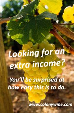 You can earn a high income, working from home, while drinking Premium Wine for Free. You've never seen anything like this. It's extremely easy to do. Anyone and everyone can do it. Don't put this off any longer. For more information and to find out how you can get involved, call Kurt at (717) 891-2905 or visit our web site at www.colonywine.com