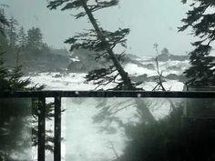 Tofino, Ucluelet HURRICANE STORM WAVES/PACIFIC OCEAN