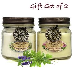Verbena Lime and Sage of Scotland Scented Candles 01 SOLAS Scented Candles: Large Glass Jar Candle Natural Soy Wax Candle-Enjoy Aromatherapy with Long Lasting 3 Wick Candle with Scents of Bergamot Lemongrass
