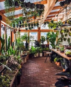 I wanna build a nursery in my back yard just like this. I wanna build a nursery in my back yard just like this. The post I wanna build a nursery in my back yard just like this. appeared first on Garden Easy. Greenhouse Plans, Greenhouse Gardening, Greenhouse Frame, Indoor Greenhouse, Greenhouse Attached To House, Greenhouse Shelves, Greenhouse Kitchen, Lean To Greenhouse, Greenhouse Interiors