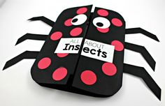 Insect Science Activities - Tunstall's Teaching Tidbits