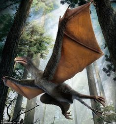 The new dinosaur, named Yi qi (shown above in the artists reconstruction), had unusual bristle-like feathers and bat-like wings that were covered in a membrane. The dinosaur may have been able to glide and even flap