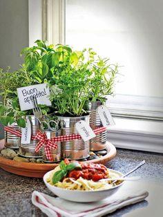 Kräuter bringen Frische und Duft auf euren Esstisch. Ihr könnt sie mischen, in große Töpfe und Körbchen pflanzen oder auch alte Konservendosen zu tollen Pflanzbehältern umgestalten.