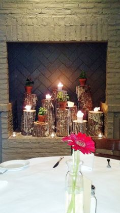 Love this idea, candles and plants on upright logs in the fireplace - combine this idea with the drilling a hole in top of the log and inserting votives
