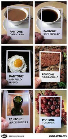 Pantone  Platt Grupo Impresor les desea FELIZ DÍA! www.platt-grupoimpresor.com