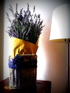lavander in my living room..