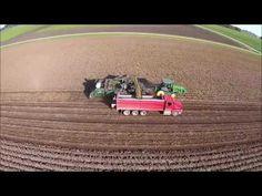 Thu hoạch khoai tây kiểu Mỹ cực nhanh bằng máy móc công nghệ cao
